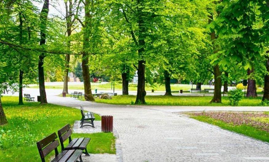 park-tradgard-omradesskydd