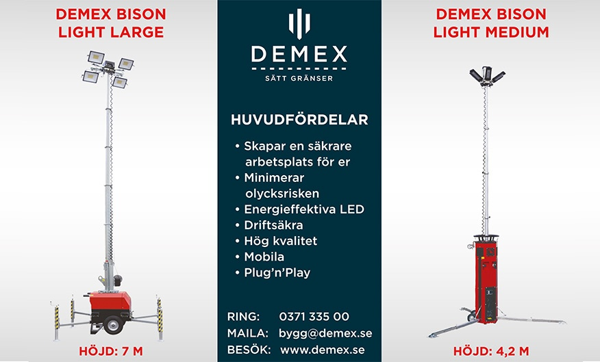 Demex Bison Lights